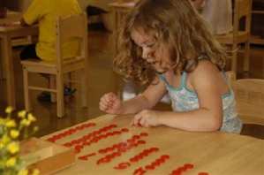 Montessori Learning Center - Bayport, NY a